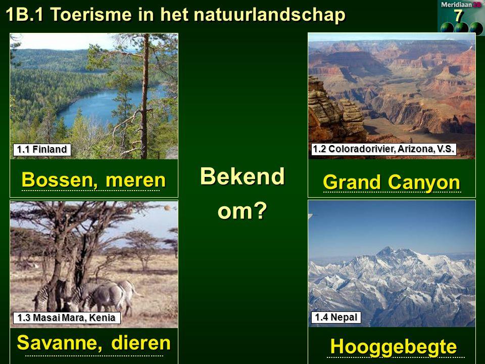 Bekend om Bossen, meren Grand Canyon Savanne, dieren Hooggebegte