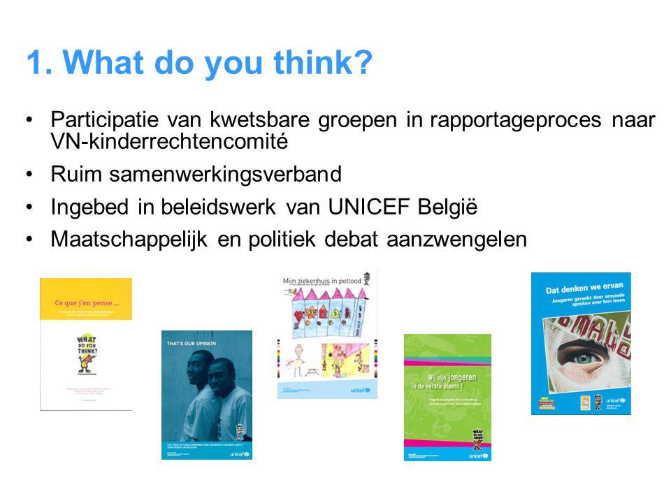1. What do you think Participatie van kwetsbare groepen in rapportageproces naar VN-kinderrechtencomité.