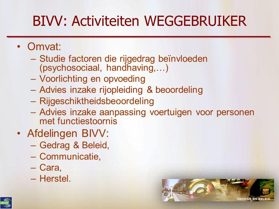 BIVV: Activiteiten WEGGEBRUIKER