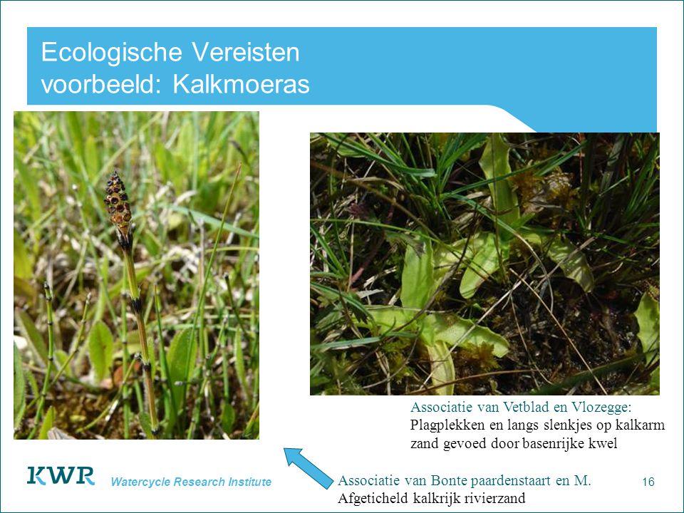 Ecologische Vereisten voorbeeld: Kalkmoeras