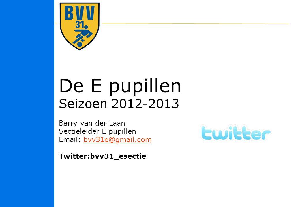 De E pupillen Seizoen 2012-2013 Barry van der Laan