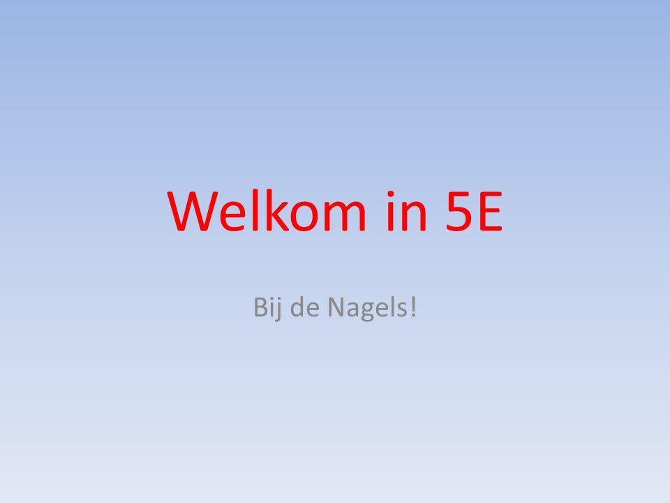 Welkom in 5E Bij de Nagels!