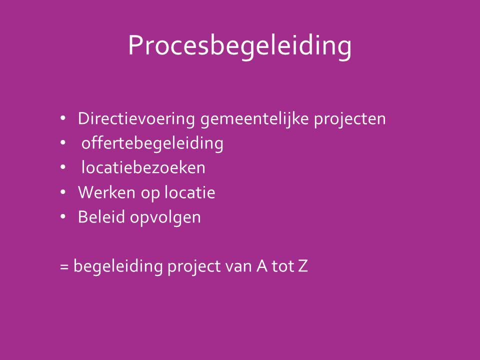 Procesbegeleiding Directievoering gemeentelijke projecten