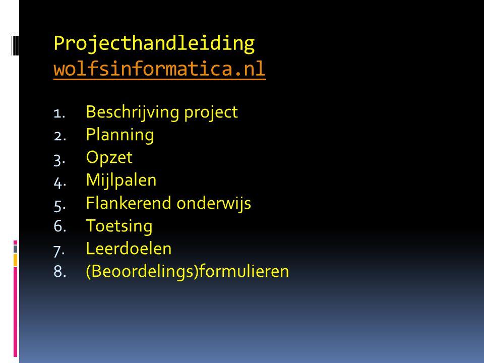 Projecthandleiding wolfsinformatica.nl