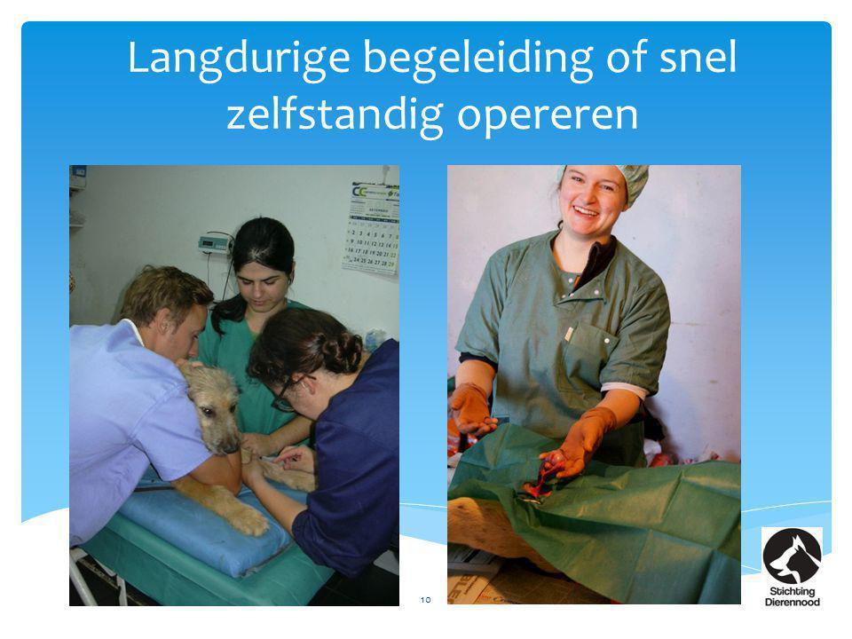 Langdurige begeleiding of snel zelfstandig opereren