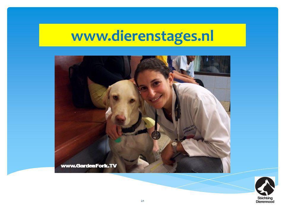 www.dierenstages.nl
