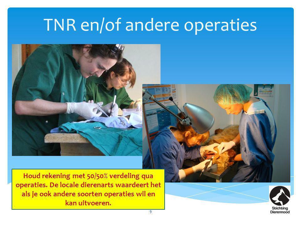 TNR en/of andere operaties