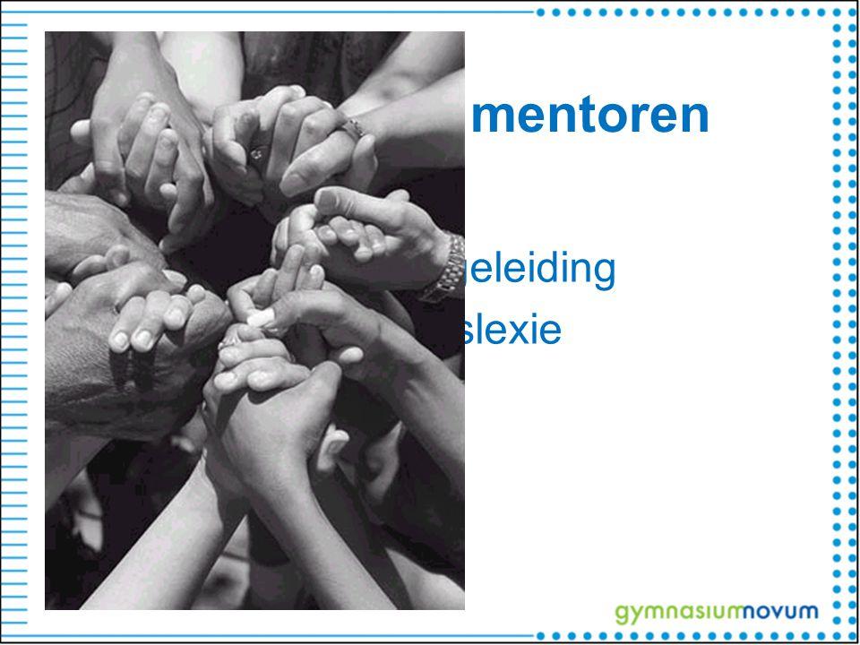 Ondersteuning mentoren