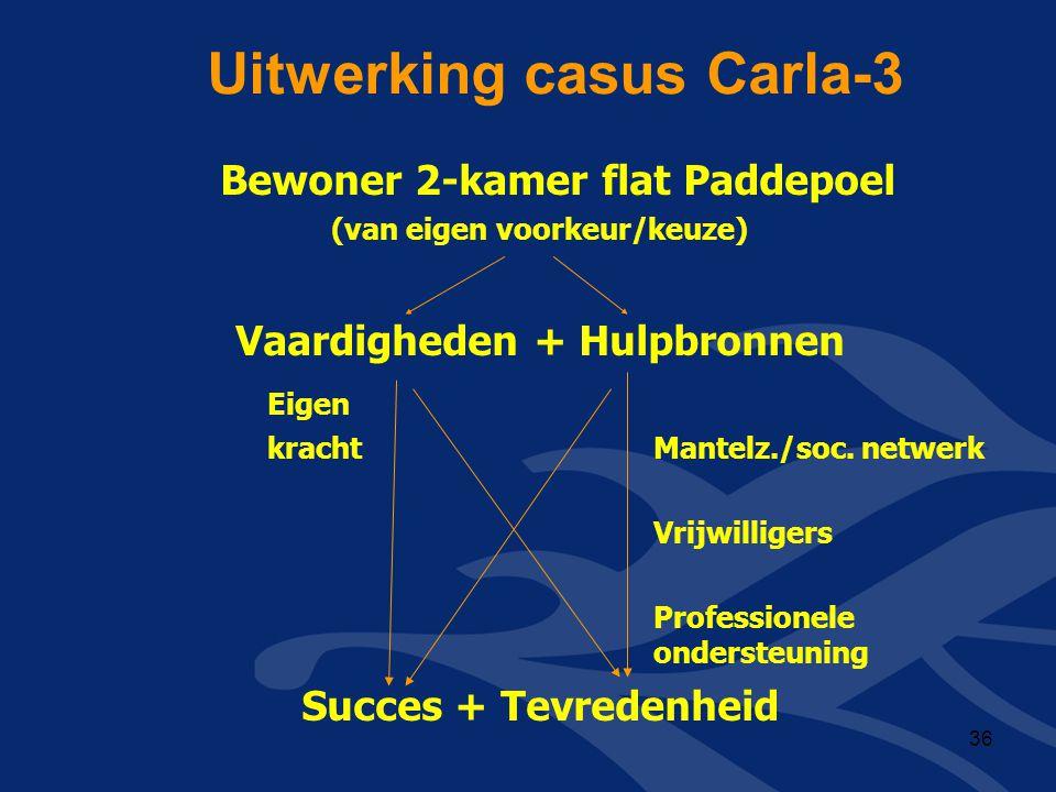 Uitwerking casus Carla-3
