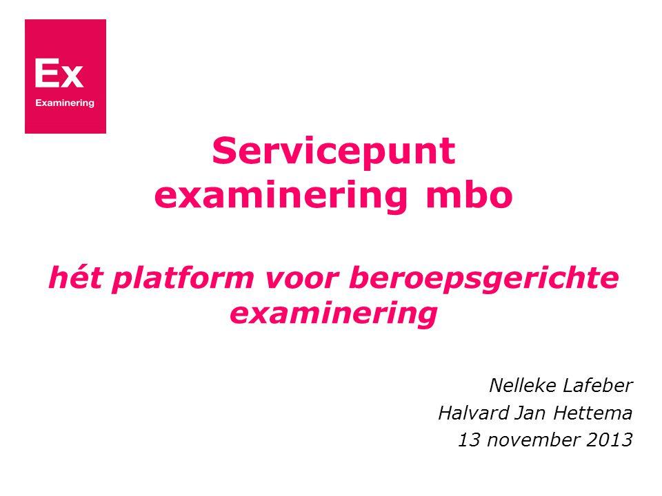 Nelleke Lafeber Halvard Jan Hettema 13 november 2013