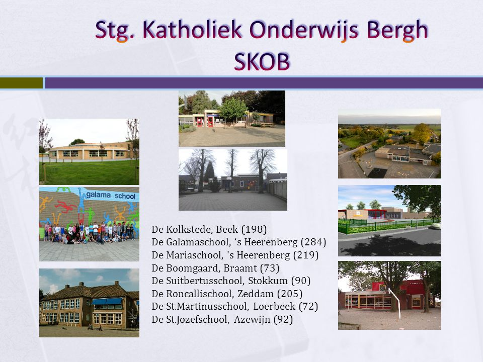 Stg. Katholiek Onderwijs Bergh SKOB