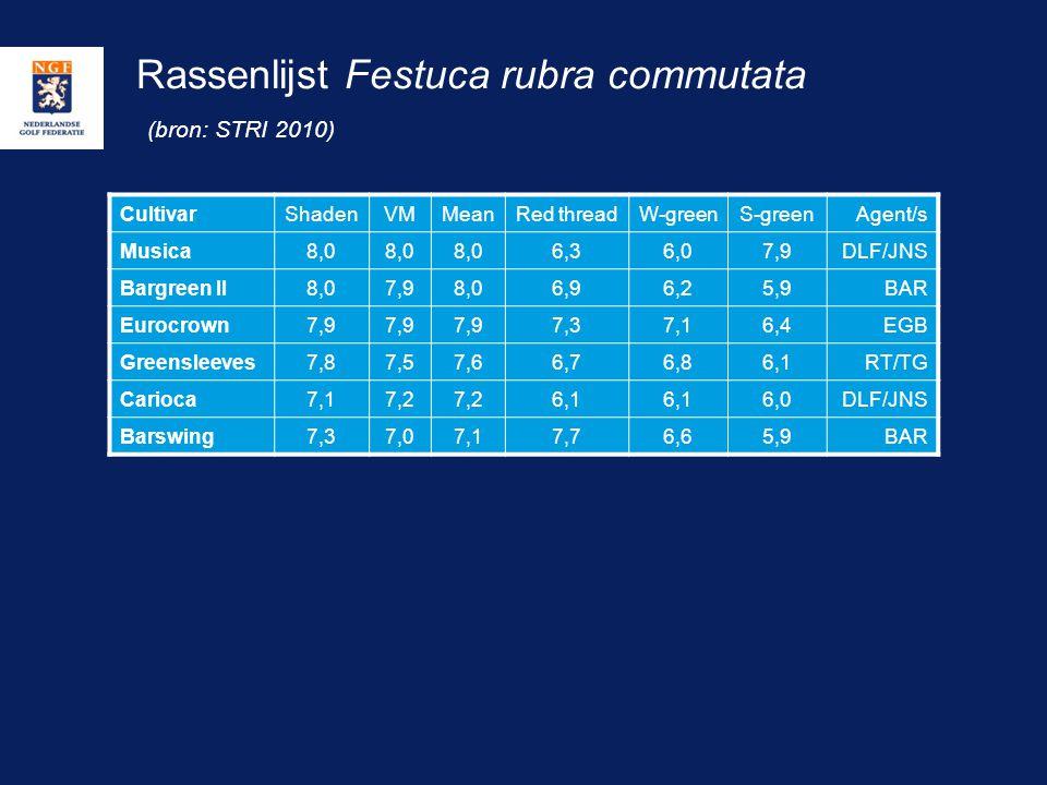 Rassenlijst Festuca rubra commutata (bron: STRI 2010)
