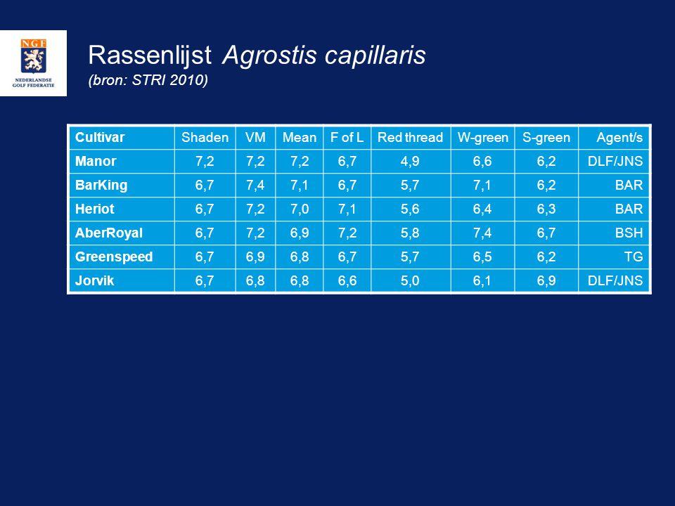 Rassenlijst Agrostis capillaris (bron: STRI 2010)
