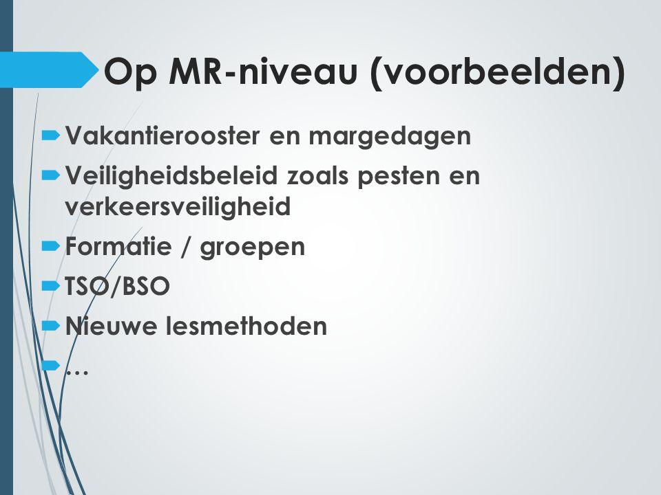 Op MR-niveau (voorbeelden)