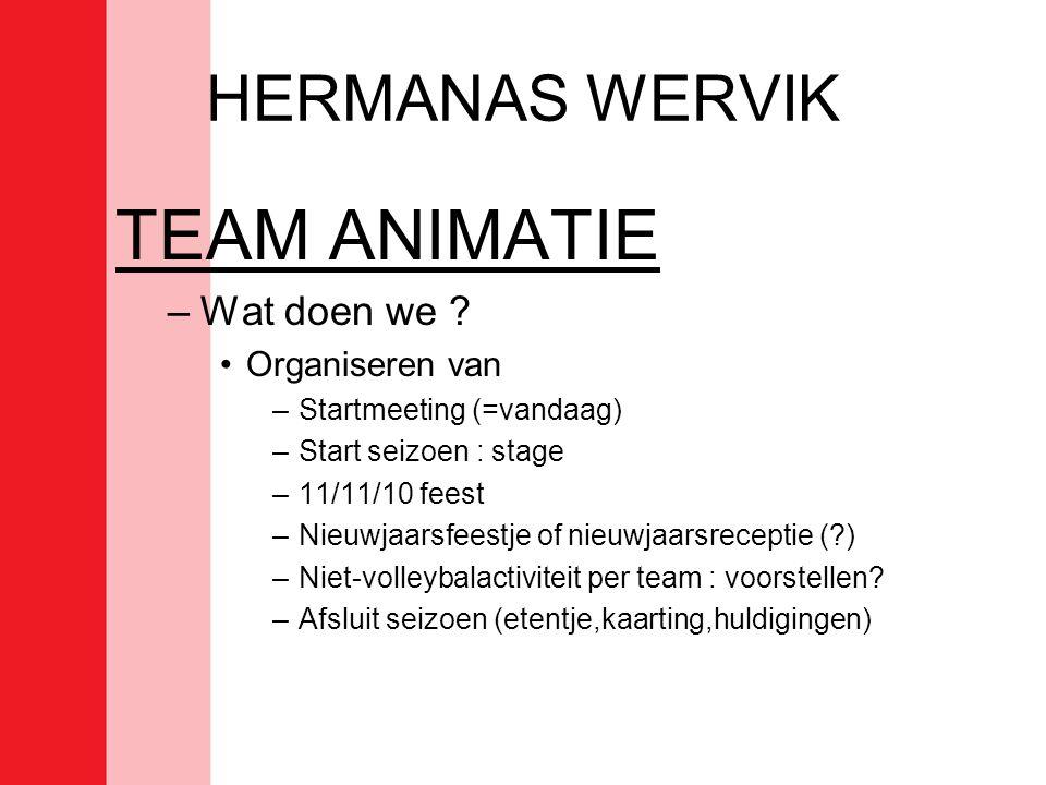 TEAM ANIMATIE HERMANAS WERVIK Wat doen we Organiseren van