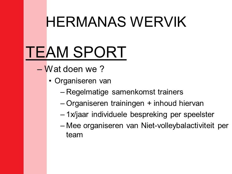 TEAM SPORT HERMANAS WERVIK Wat doen we Organiseren van