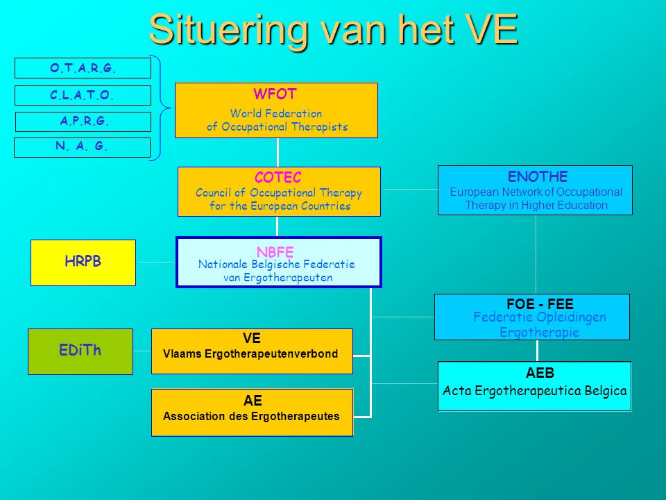 Vlaams Ergotherapeutenverbond Association des Ergotherapeutes