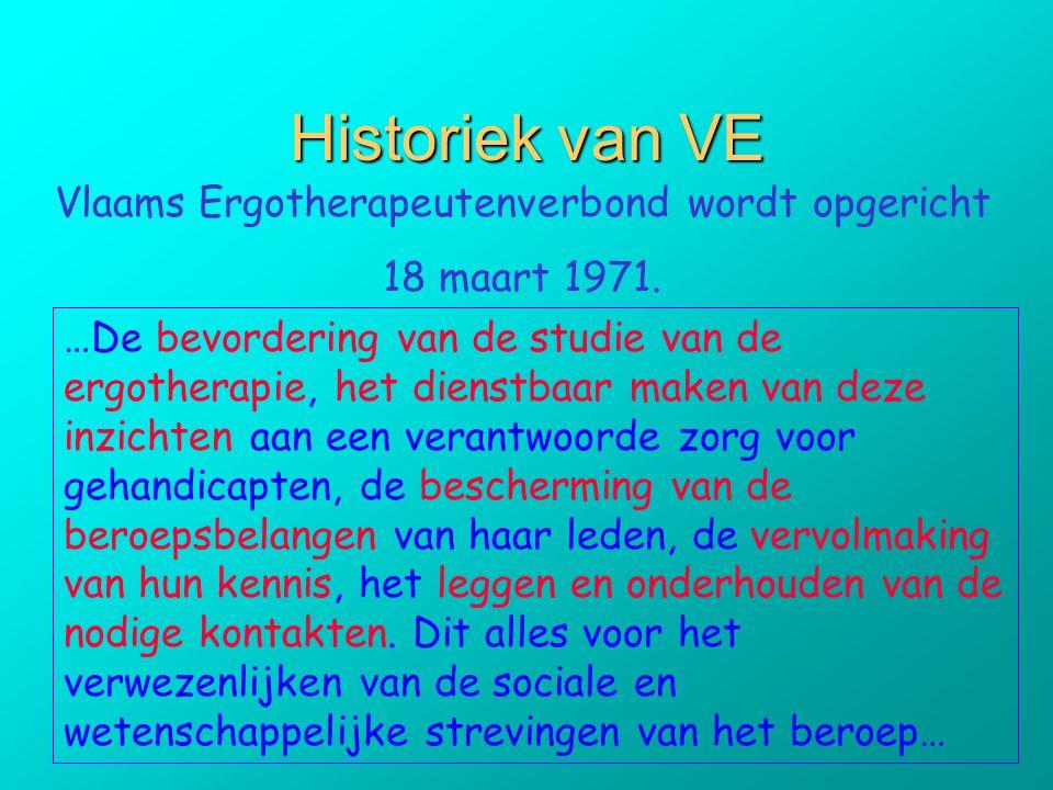 Vlaams Ergotherapeutenverbond wordt opgericht