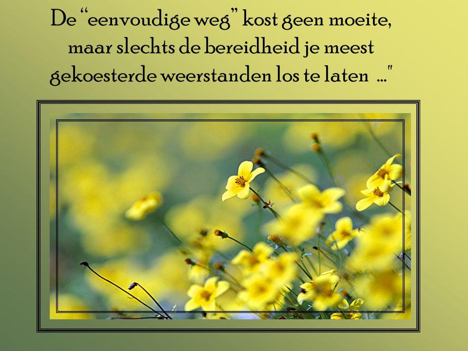 De eenvoudige weg kost geen moeite, maar slechts de bereidheid je meest gekoesterde weerstanden los te laten ...
