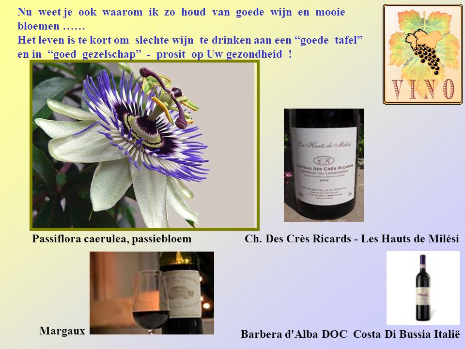 Nu weet je ook waarom ik zo houd van goede wijn en mooie bloemen ……