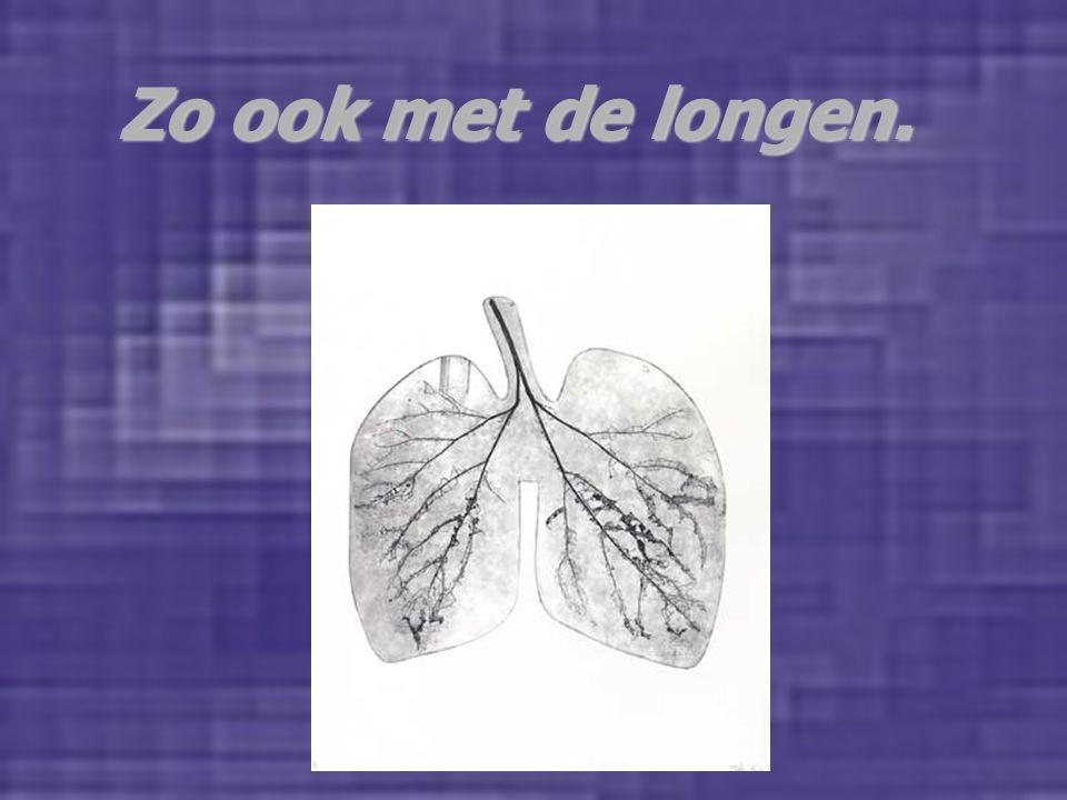 Zo ook met de longen. DE BAAS