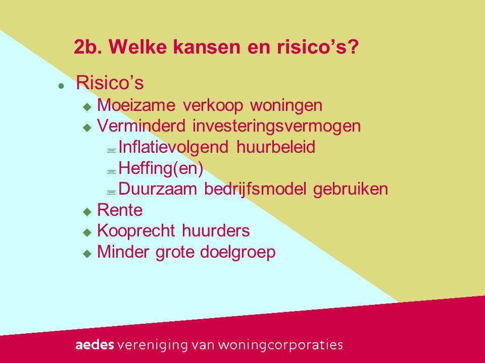2b. Welke kansen en risico's