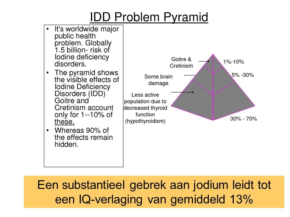 Een substantieel gebrek aan jodium leidt tot een IQ-verlaging van gemiddeld 13%