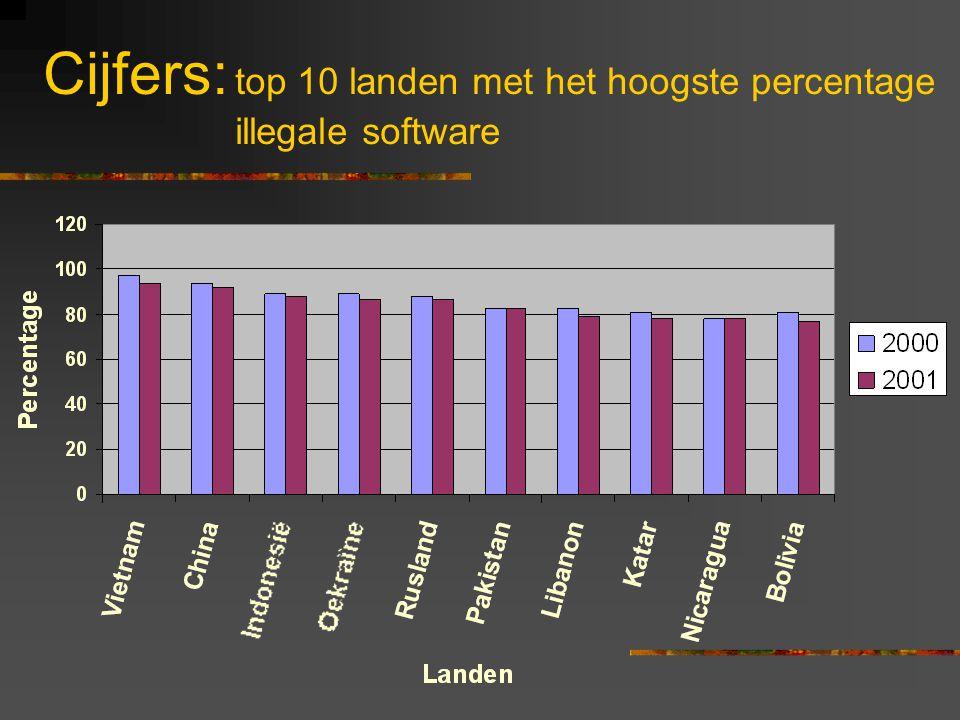 illegale software bedrijf