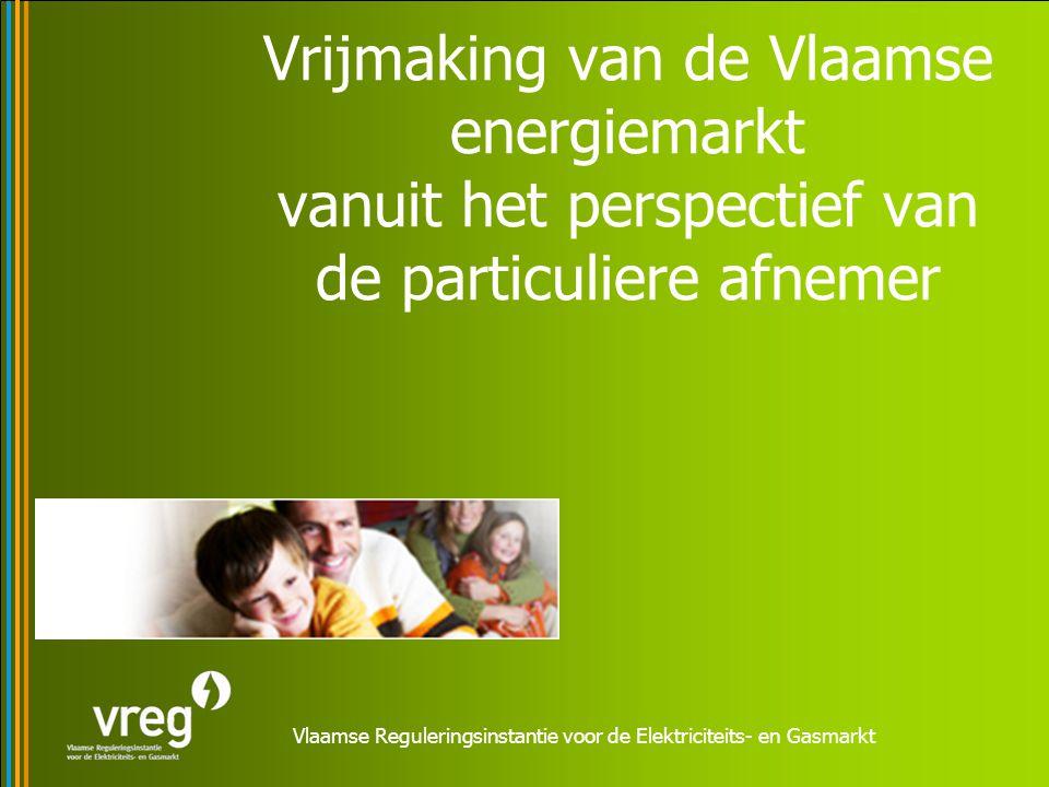 Vlaamse Reguleringsinstantie voor de Elektriciteits- en Gasmarkt