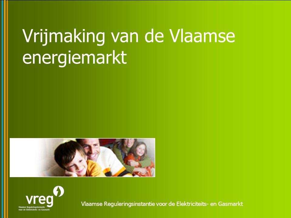 Vrijmaking van de Vlaamse energiemarkt