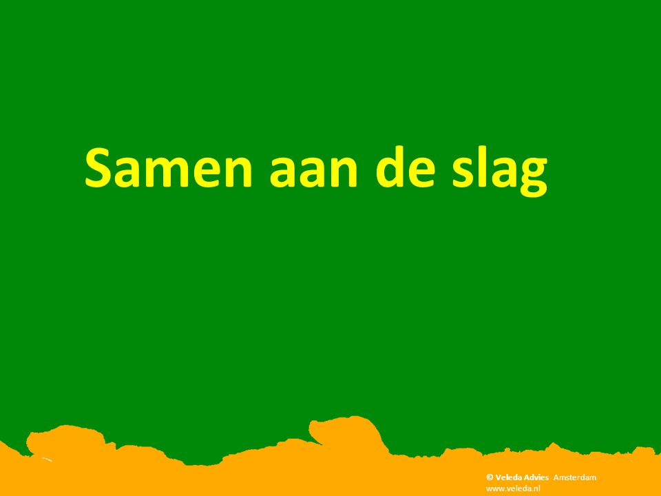 Samen aan de slag © Veleda Advies Amsterdam www.veleda.nl
