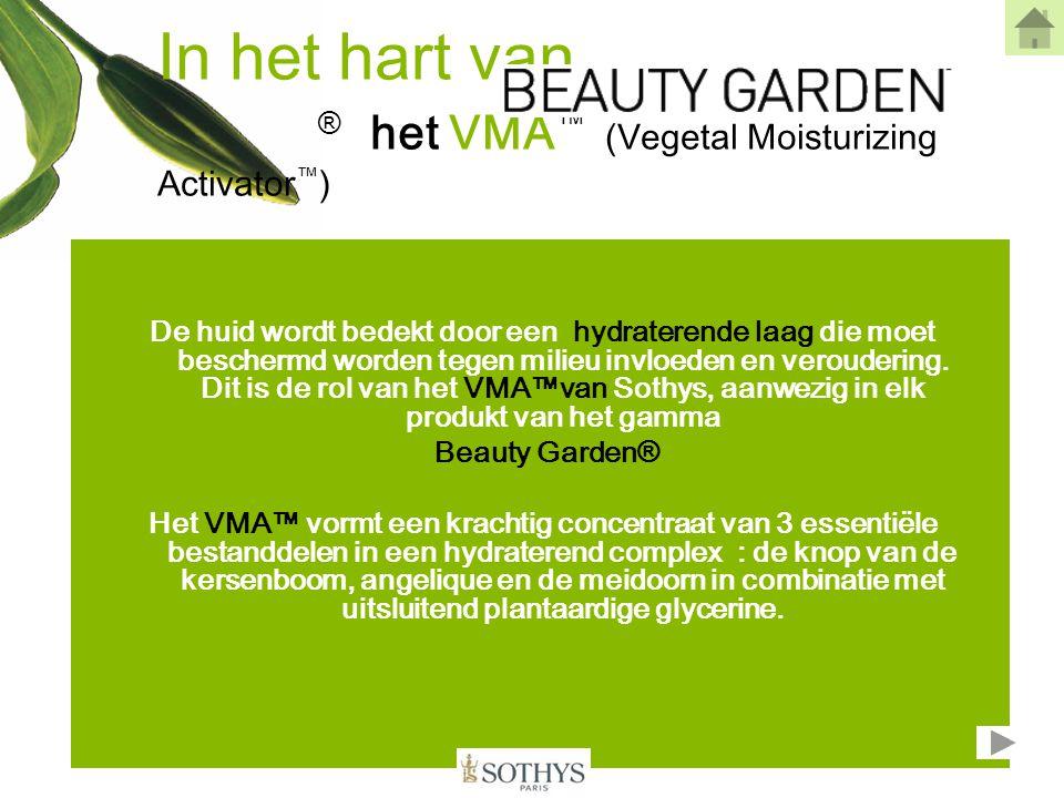 In het hart van ® het VMA™ (Vegetal Moisturizing Activator™)