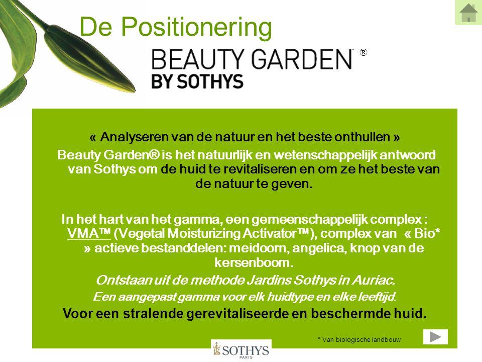 De Positionering ® « Analyseren van de natuur en het beste onthullen »