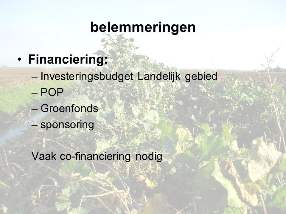 belemmeringen Financiering: Investeringsbudget Landelijk gebied POP