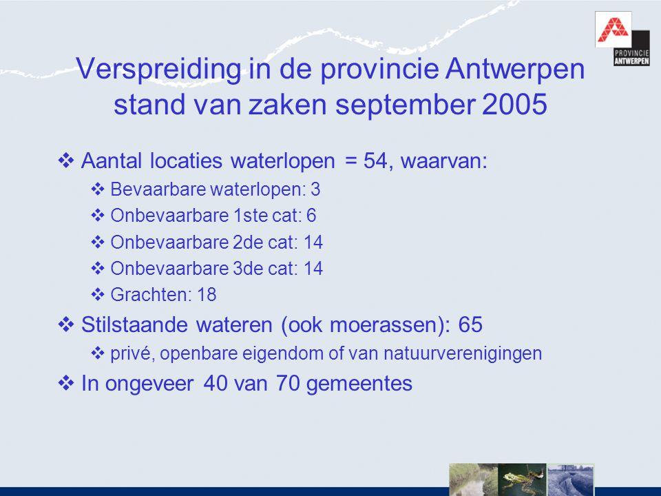 Verspreiding in de provincie Antwerpen stand van zaken september 2005