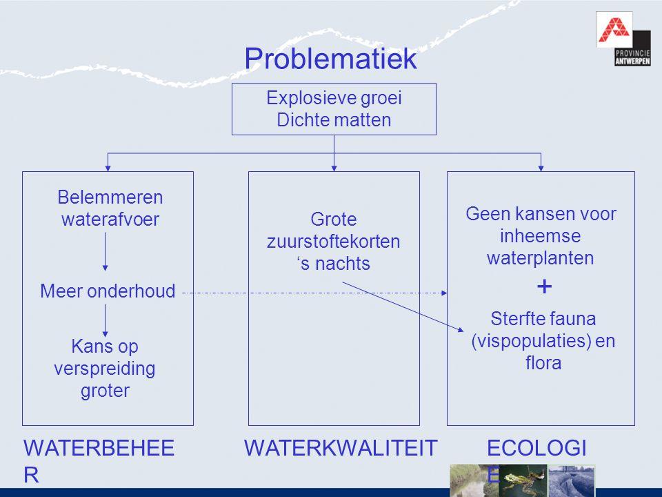 Problematiek + WATERBEHEER WATERKWALITEIT ECOLOGIE Explosieve groei