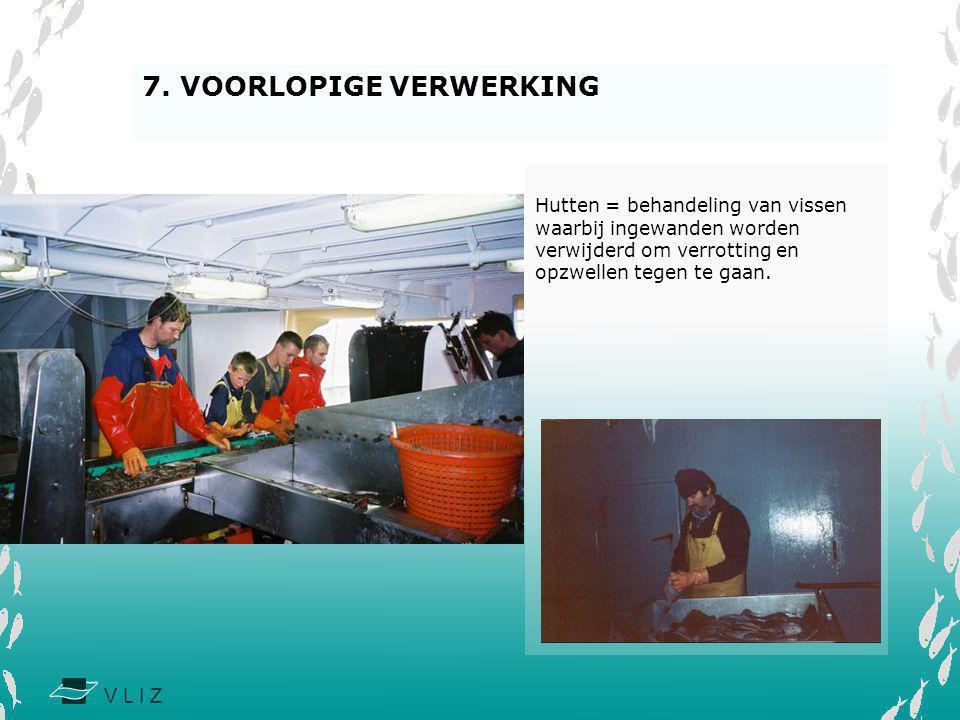 7. VOORLOPIGE VERWERKING