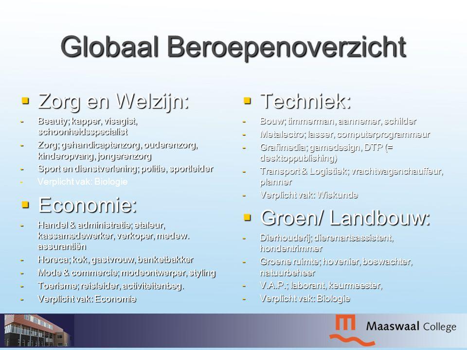 Globaal Beroepenoverzicht