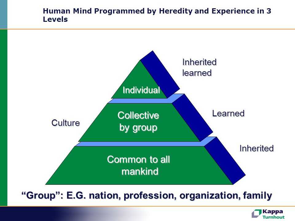 Human Mind Programmed by Heredity and Experience in 3 Levels