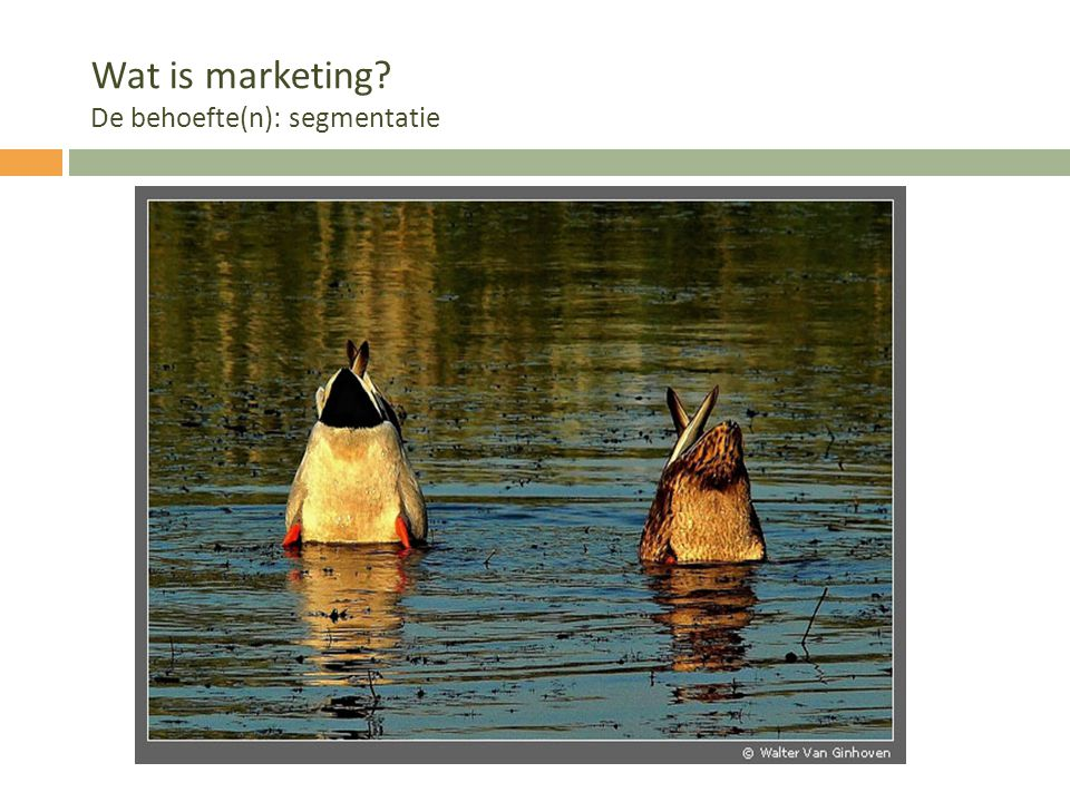 Wat is marketing De behoefte(n): segmentatie