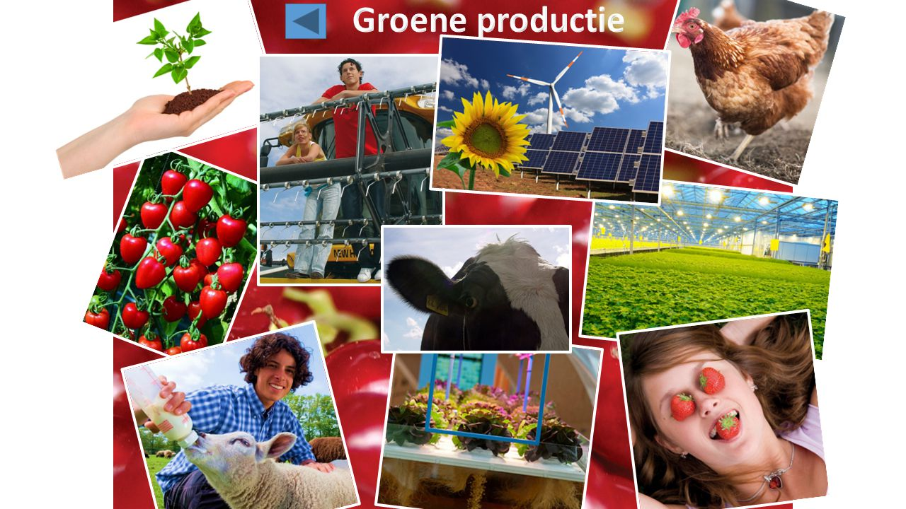 Groene productie
