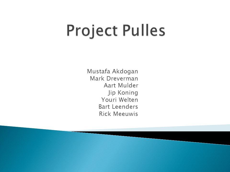 Project Pulles Mustafa Akdogan Mark Dreverman Aart Mulder Jip Koning