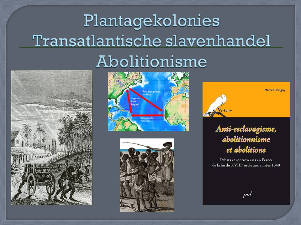 Plantagekolonies Transatlantische slavenhandel Abolitionisme