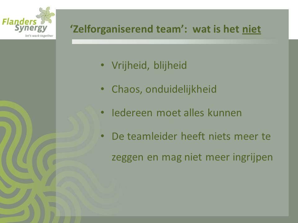 'Zelforganiserend team': wat is het niet