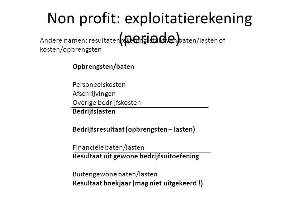 Non profit: exploitatierekening (periode)