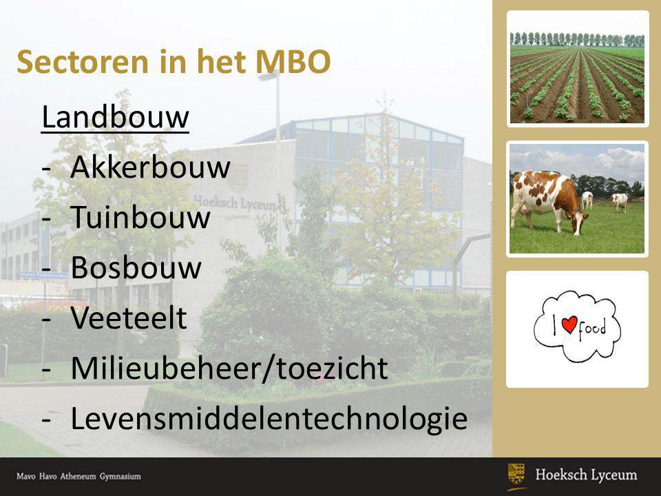 Sectoren in het MBO Landbouw Akkerbouw Tuinbouw Bosbouw Veeteelt
