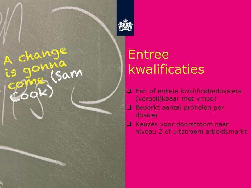 Entree kwalificaties Een of enkele kwalificatiedossiers (vergelijkbaar met vmbo) Beperkt aantal profielen per dossier.