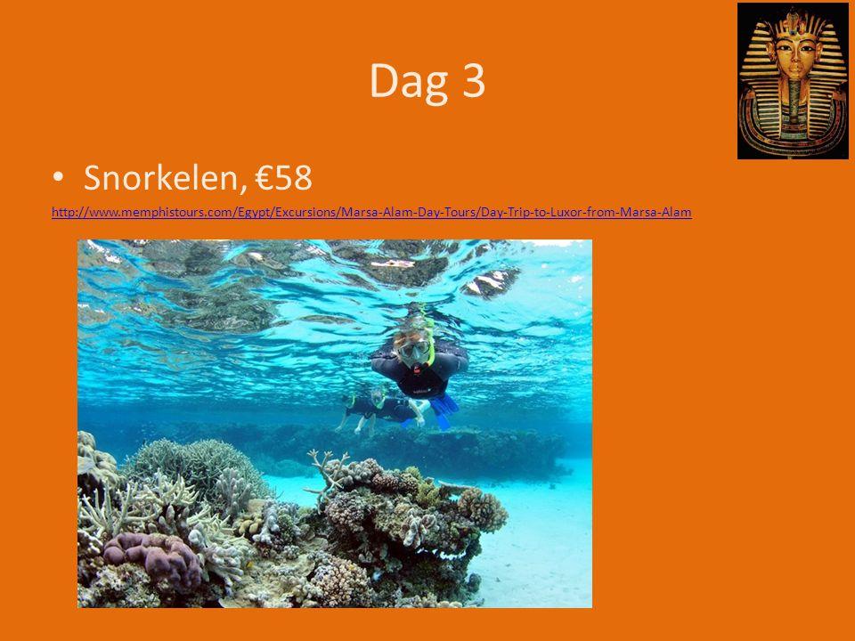 Dag 3 Snorkelen, €58.