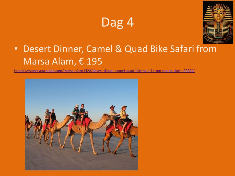 Dag 4 Desert Dinner, Camel & Quad Bike Safari from Marsa Alam, € 195