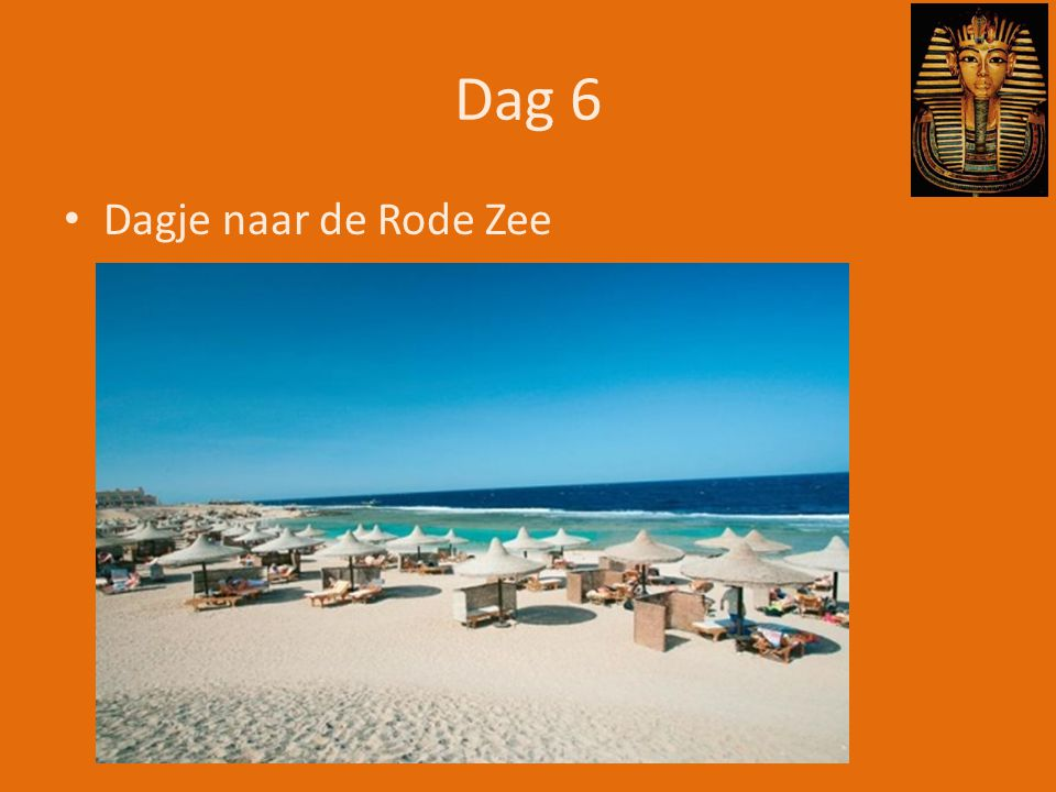 Dag 6 Dagje naar de Rode Zee